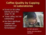 coffee quality by cupping in laboratories