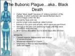 the bubonic plague aka black death