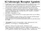 b2 adrenergic receptor agonists