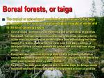 boreal forests or taiga3