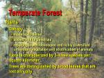 temperate forest4