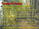 temperate forest7