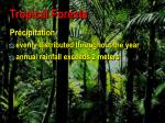 tropical forests4