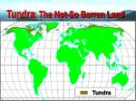 tundra the not so barren land2