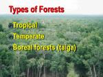 types of forests