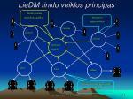 liedm tinklo veiklos principas