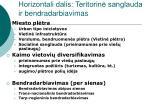 horizontali dalis teritorin sanglauda ir bendradarbiavimas