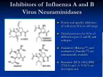 inhibitors of influenza a and b virus neuraminidases