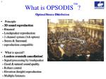 what is opsodis