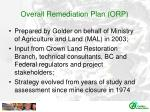overall remediation plan orp