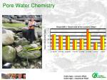pore water chemistry
