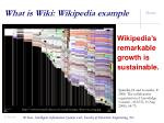 what is wiki wikipedia example4