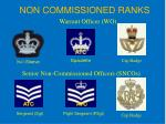 non commissioned ranks