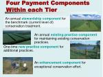 four payment components within each tier