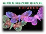 las alas de las mariposas son arte del