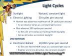 light cycles