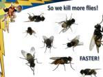 so we kill more flies
