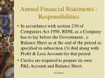 annual financial statements responsibilities