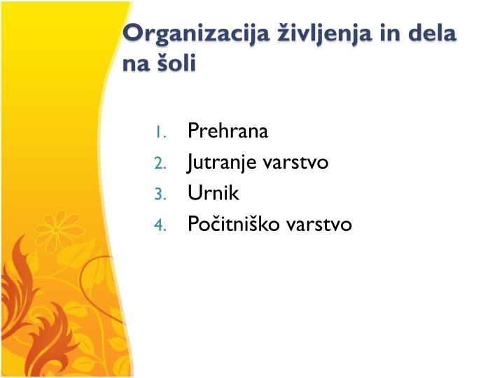 Organizacija življenja in dela na šoli