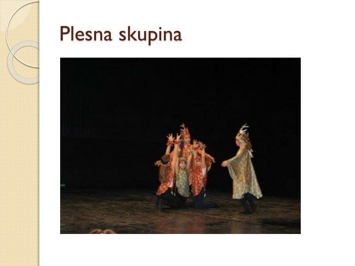 Plesna skupina