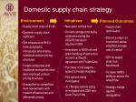domestic supply chain strategy