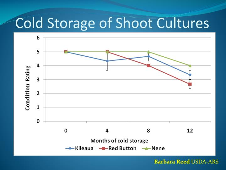 Cold Storage of Shoot Cultures