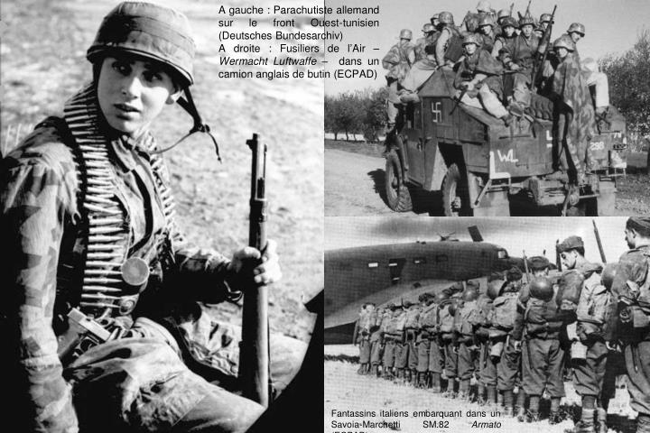 A gauche : Parachutiste allemand sur le front Ouest-tunisien (Deutsches Bundesarchiv)