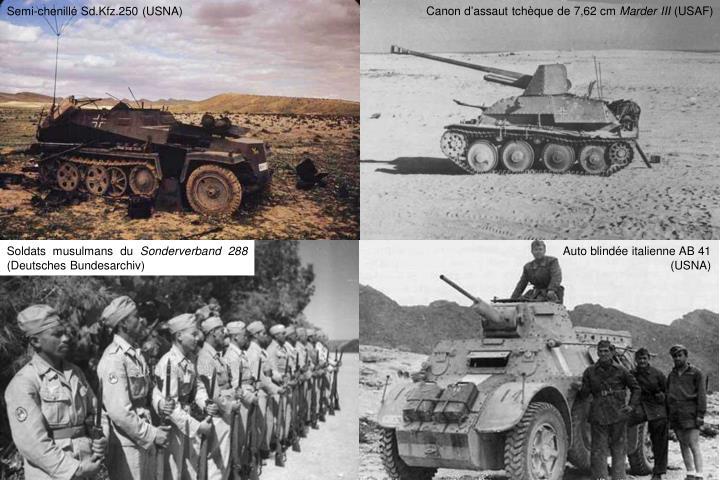 Canon d