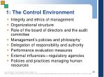 1 the control environment