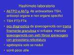 hashimoto laboratorio