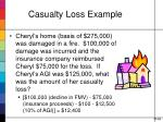 casualty loss example