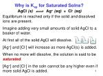 why is k sp for saturated solns