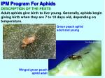 ipm program for aphids2