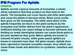 ipm program for aphids3