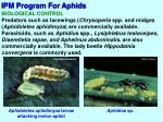 ipm program for aphids4