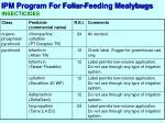 ipm program for foliar feeding mealybugs7