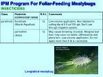 ipm program for foliar feeding mealybugs8