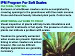 ipm program for soft scales3