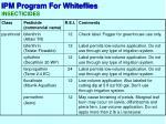 ipm program for whiteflies10