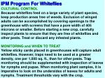 ipm program for whiteflies5