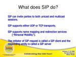 what does sip do