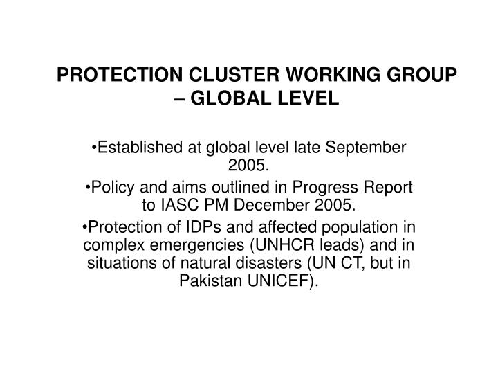 protection cluster working group global level n.