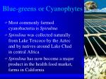 blue greens or cyanophytes
