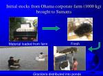 initial stocks from ohama corporate farm 1000 kg brought to sumatra