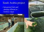 saudi arabia project