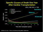 specific causes of death one year after cardiac transplantation