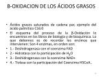 oxidacion de los cidos grasos