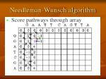 needleman wunsch algorithm2