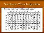 needleman wunsch algorithm3