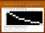 needleman wunsch algorithm4